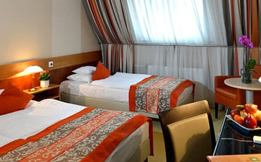 Offer with half board in Hotel Sopron****